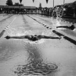 Tribute to the Lonely Swimmer